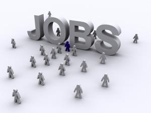 Law School Jobs
